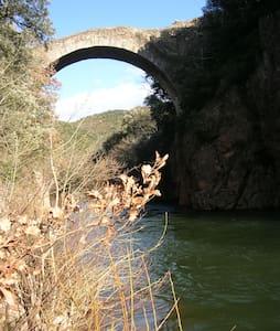 L'Olivette - Villemagne-l'Argentière - 独立屋