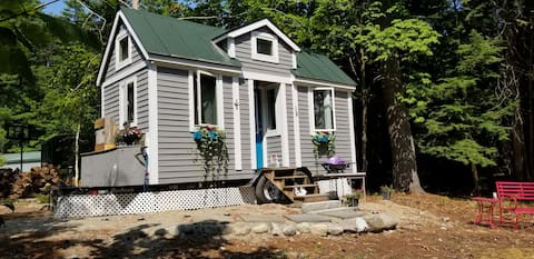 Mini Maine Living