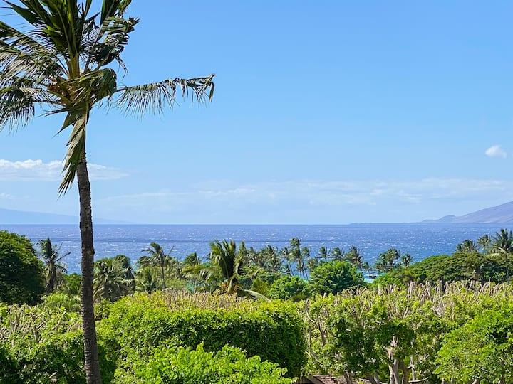 New Pics! Sale! Ocean View 1bd/2ba The Palms 1604