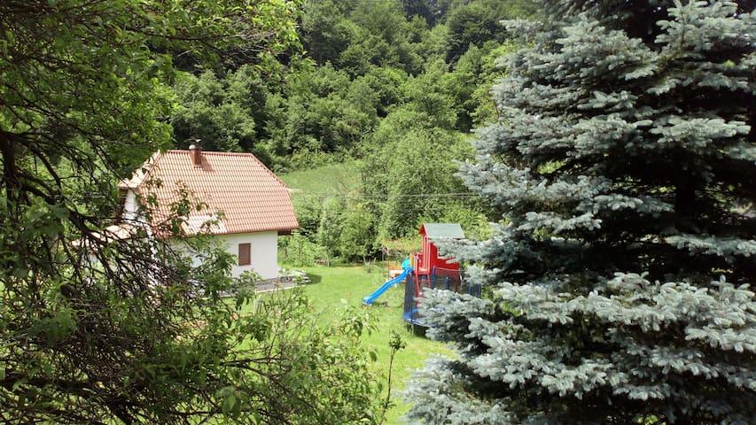 Visoko, Cottage Forest Stream