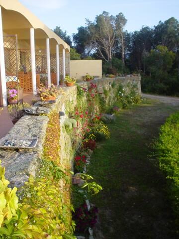 """Special guest: Isola meravigliosa in """"prima fila"""" - Biodola - Villa"""