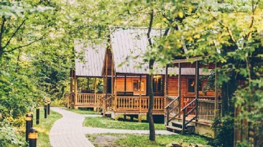 Rustic Cabin, Modern Comforts, Resort Amenities