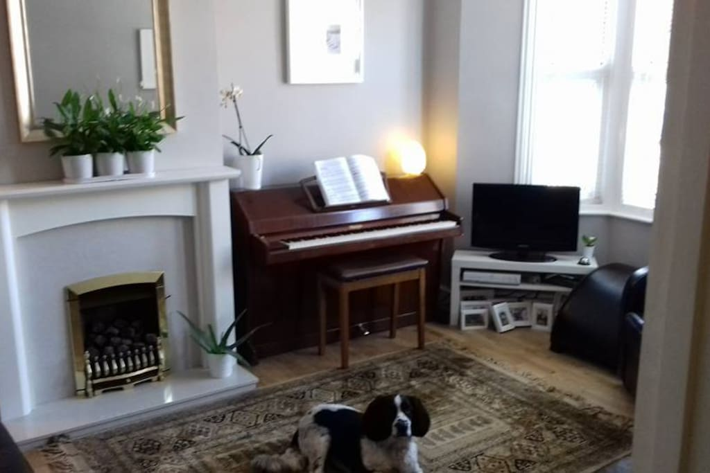 Our friendly old spaniel will make you feel at home!