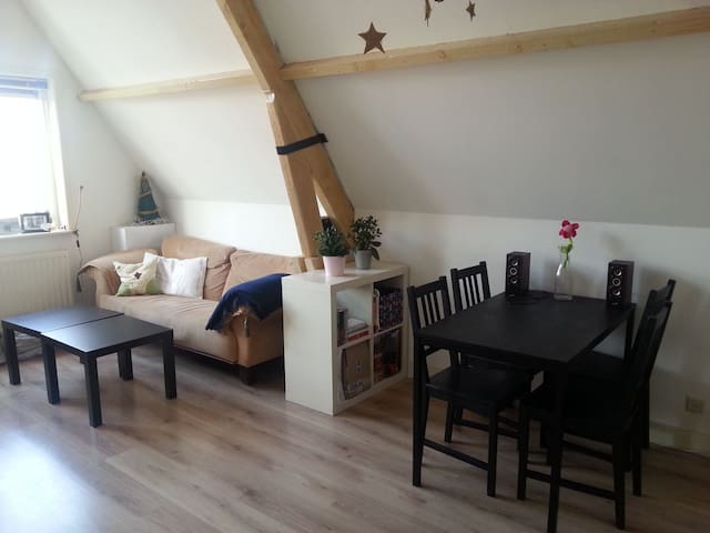 Light-Cosy-Openspace flat in the city centre - Delft - 아파트