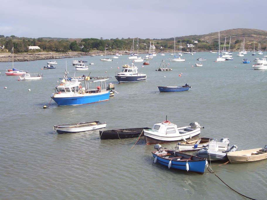 Schull Harbour -sailing and fishing activities