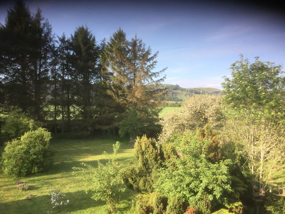 A view of the Ochil Hills from the garden.