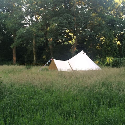 Meadow for One - Camp in your own private Meadow! - Norfolk
