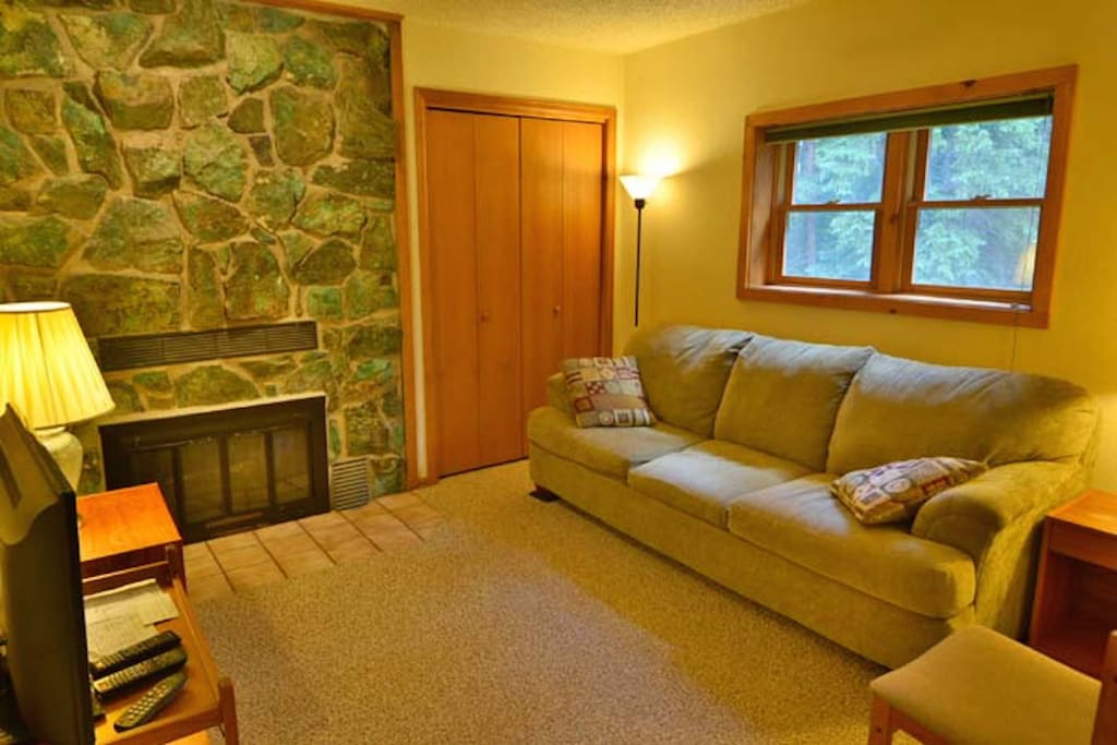 Den with very comfy sleeper sofa, fireplace, & cable tv