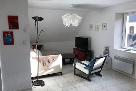 """""""Prunelle"""" Grand apt en Duplex, lumineux de 80 m2."""