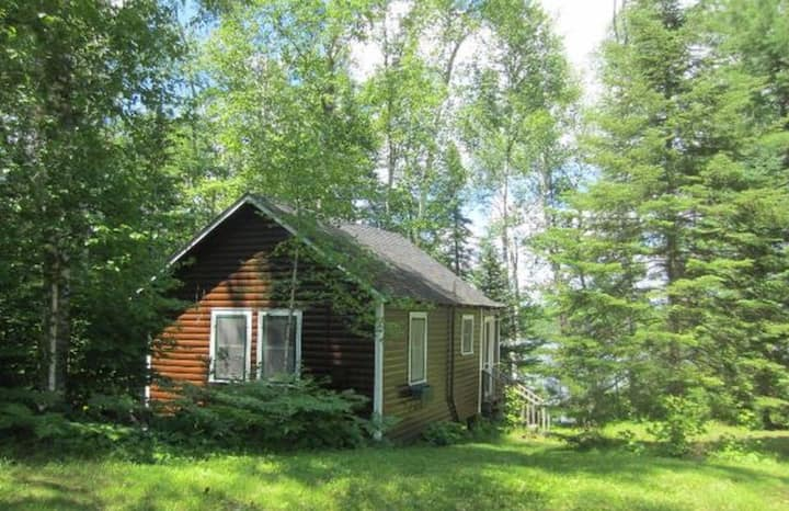 Turtle Point Outpost - Box Turtle Cabin