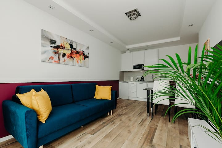 Enjoy an awesome stay in this fantastic, bright, spacious one bedroom apartment. Plenty of natural light and a great color scheme liven it all up! you will be energized and powered up in no time. Fast Wifi, netflix, self check-in. Ask for parking!