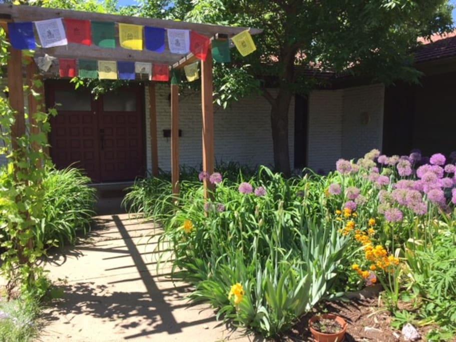 Zen Front Garden