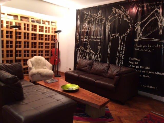 Amplio departamento con vista al parque forestal - Santiago - Apartment