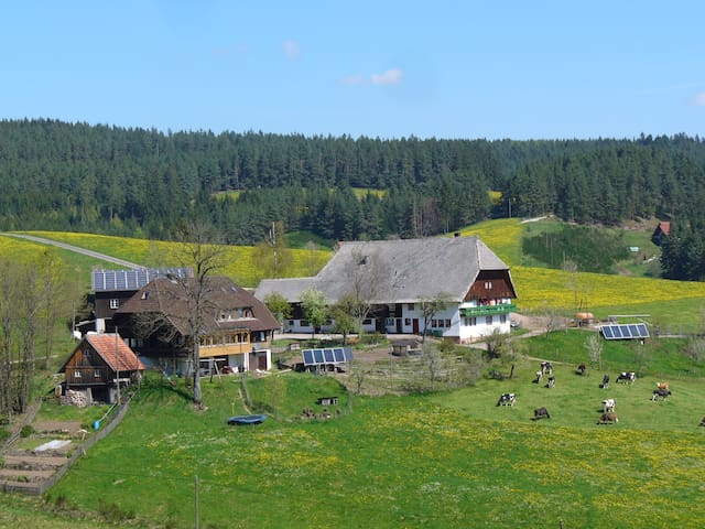 Holiday apartment on our farm in the Black Forest - Schramberg - Apartament