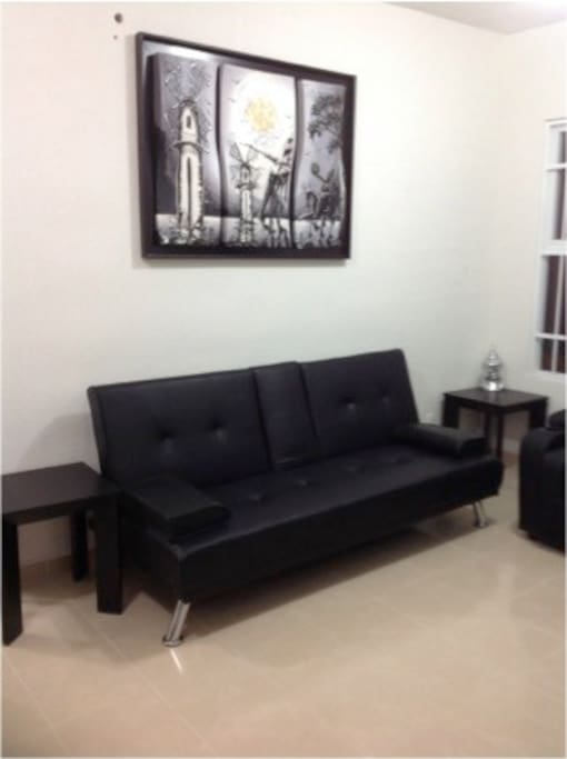 Sala con 1 sofa cama