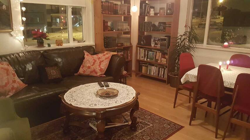 Cozy room for cat and book lovers!