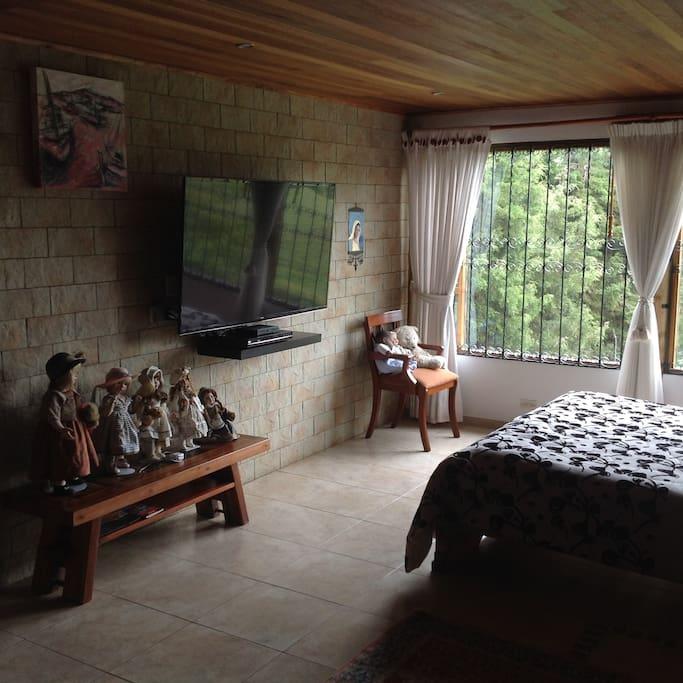habitación principal con TV LED de 50 pulgadas y TV SATELITAL