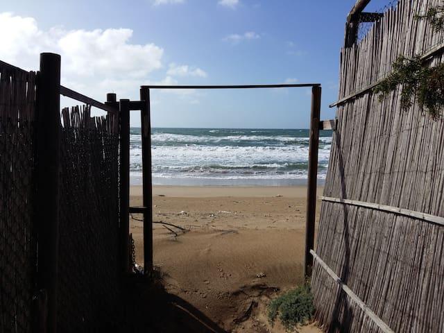 lungomare di sabaudia cn discesa al mare e al lago - Sabaudia - House