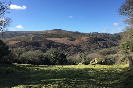 Stunning Dartmoor Farm House - Lustleigh