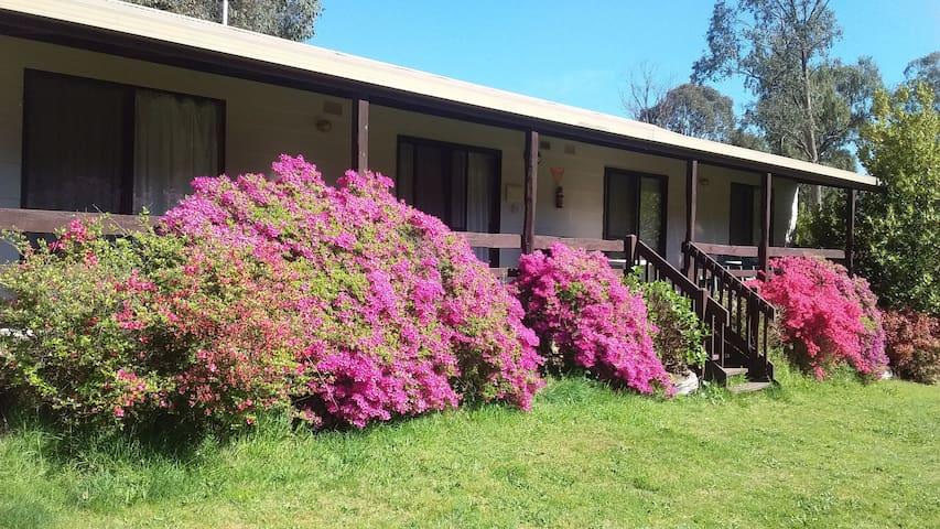 Emerald Park Holiday Farm, Jamieson cabin 4