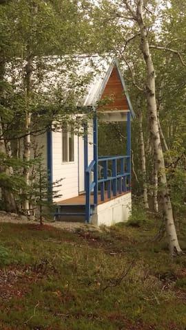 Denali Get Away - 1 Room Cabin