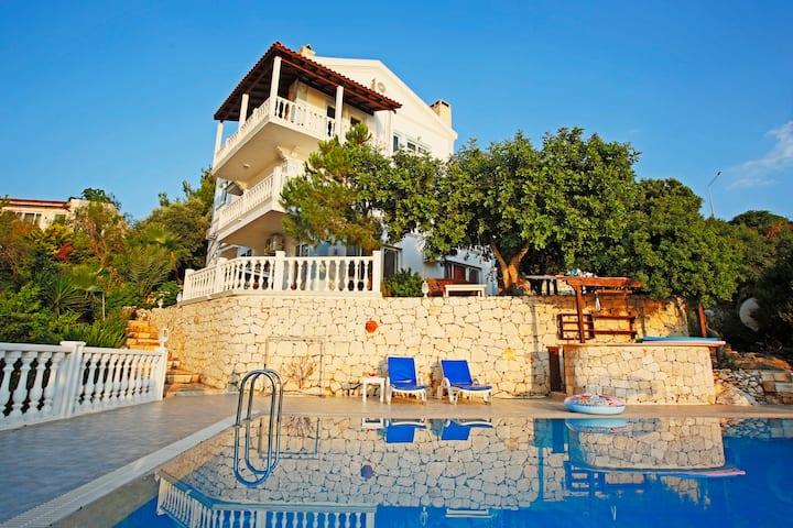 Tüm ev size ait- üç katlı (3 daire), havuz, bahçe