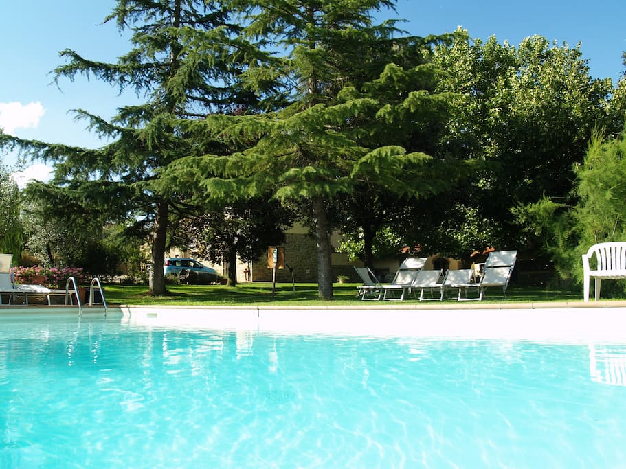 Panoramic apartment in Tuscany near Siena and Florence: swimming pool and garden