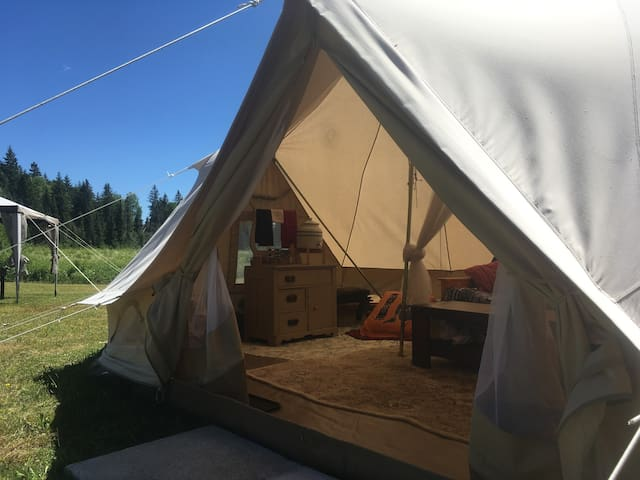 Wild North Off Grid Camping Experience