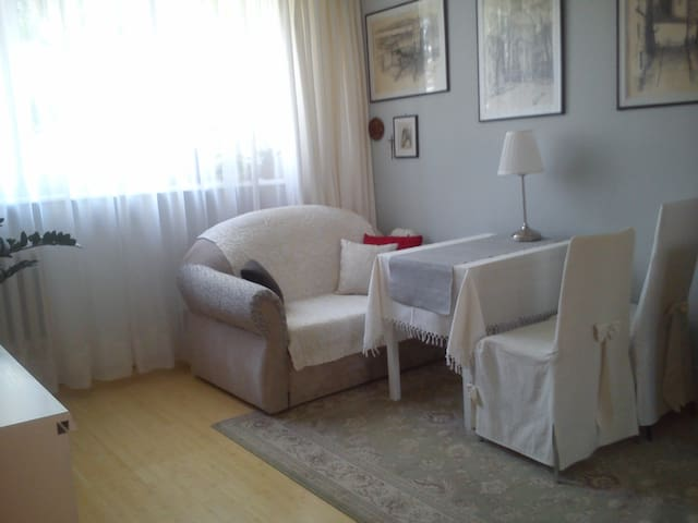 Perfect cozy apartment near old town