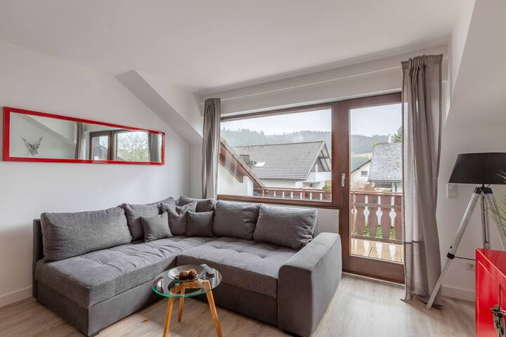 Enticing Holiday Home in Winterberg near Ski-Area