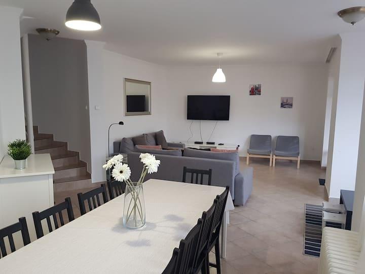 Zoli Apartmanok, Kölcsey 19 Villa