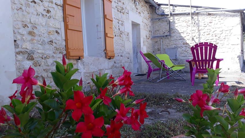 Location vacances - Gîte meublé - Epargnes Cozes