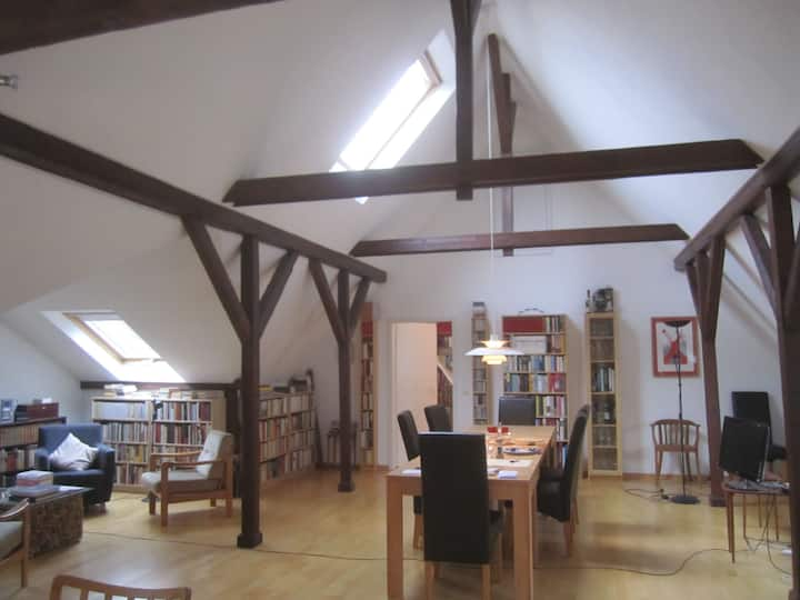 Spacious loft in the heart of Bonn