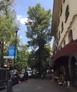 Lovely Suite / Excelent Location - Mexiko-Stadt - Loft