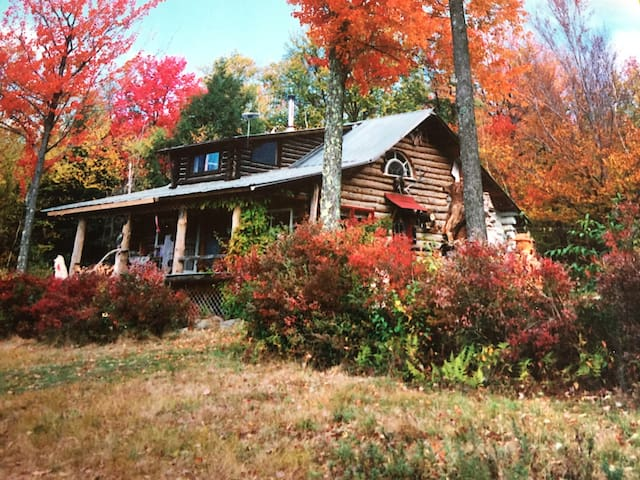 McGuire Hill Acres Artist Log Cabin - Neversink