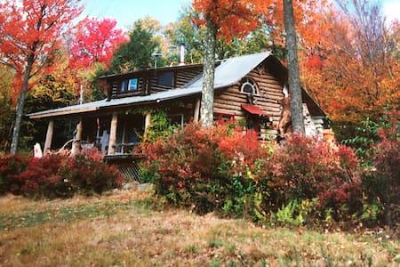 McGuire Hill Acres Artist Log Cabin - Neversink
