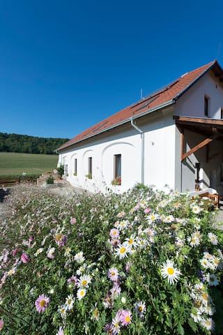 Gabonás Magtár - Miszla - Guesthouse