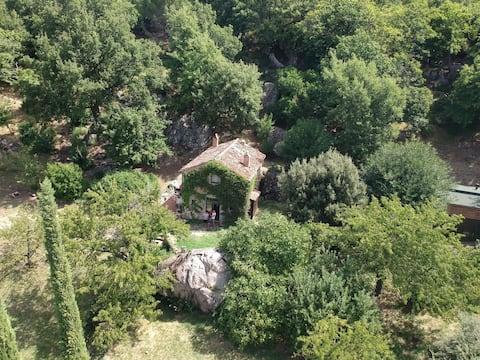 Terra Delle Sidhe, Seggiano, Toskánsko