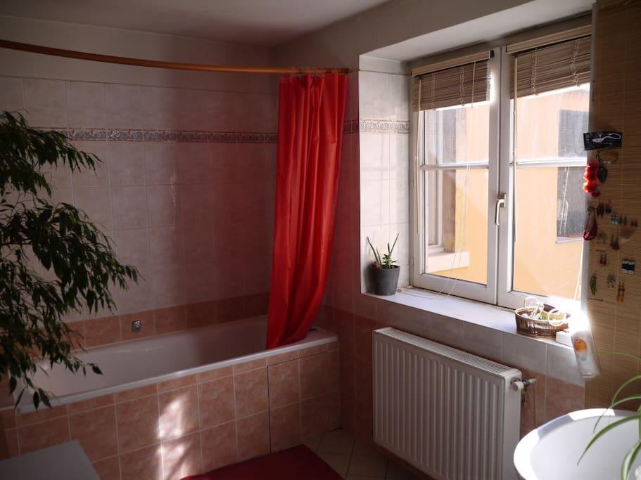 grande salle de bain lumineuse