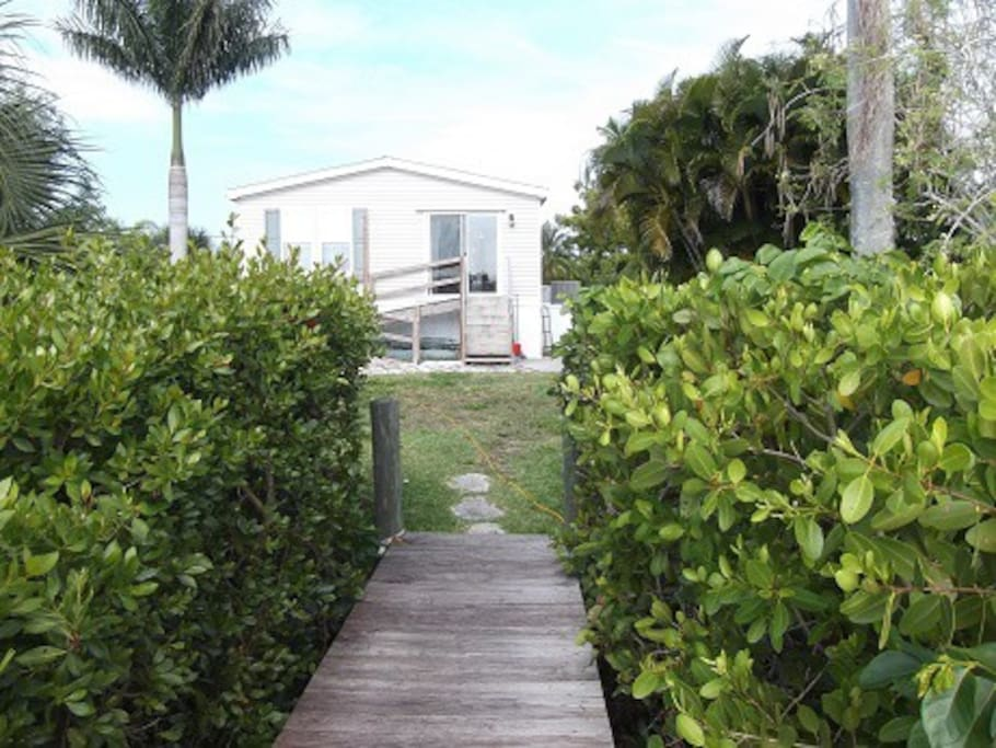 Rear of home from dock - there is a fish cleaning table with faucet and sink, and a propane BBQ for grilling.  Wheelchair ramp present from prior owners, and no stairs in home - one bath fully wheelchair accessible.  The mangrove hedge has since been trimmed down.