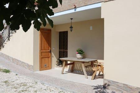 Azienda Bucci - Giuliano Teatino