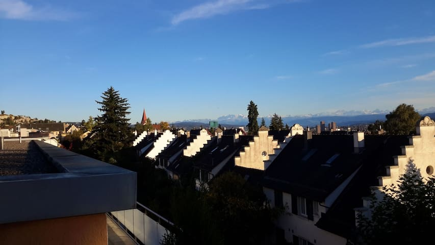 2.5 Private Rooms & Bath in Zurich's Vineyard