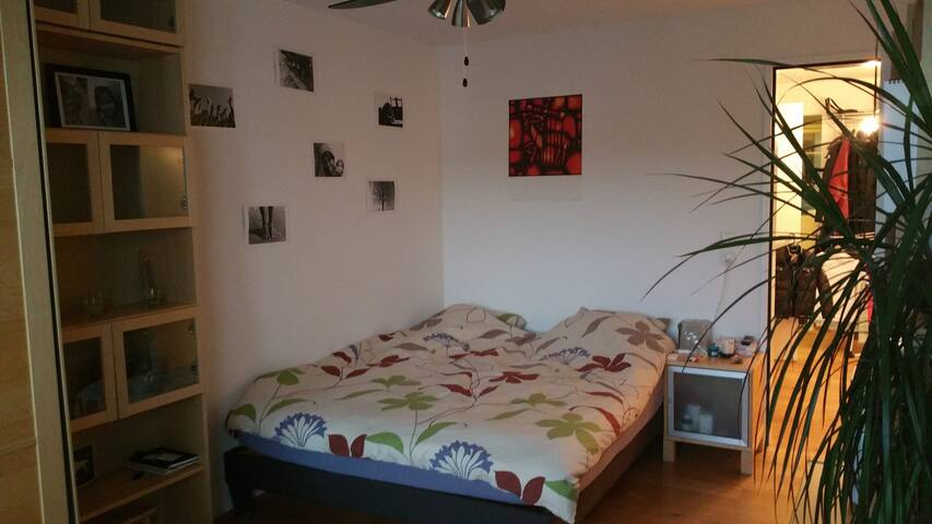 Nice quiet clean room at 11 min from main station - Zürich - Apartment