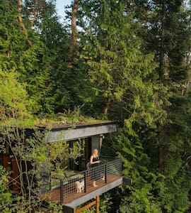 Pleasant Bay Lookout - Bellingham - Treehouse