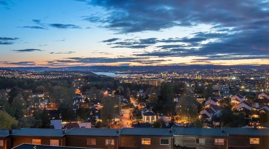 Oslo Panoramic - go greener!