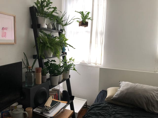 Private Bedroom in Heart of Williamsburg Brooklyn