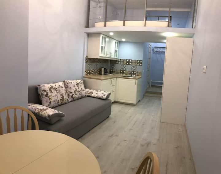 Уютная студия для 2-4 чел. в центре Петербурга