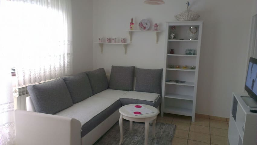 Lovely 2 bed Apt., relax & peace! - Drežnik Grad - Apartment