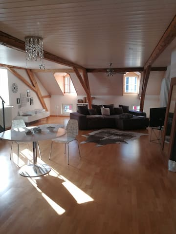 Exclusive City Appartement in the Heart of Basel