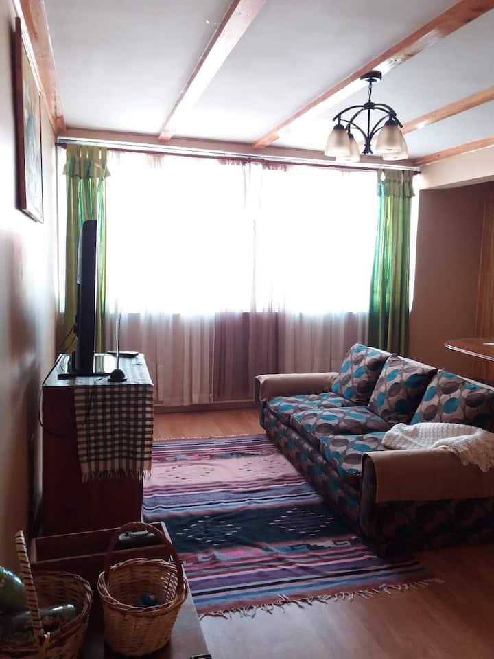 Confortable Apartament